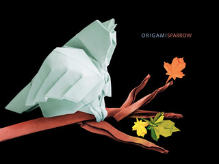 Origami sparrow bird