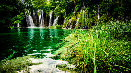 view of beautiful waterfall in the forest