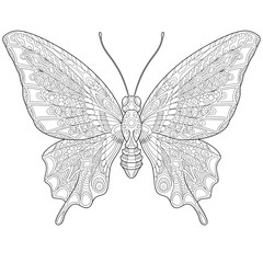 Zentangle stylized cartoon butterfly, isolated on white background. Hand drawn sketch for adult antistress coloring page, T-shirt emblem, logo or tattoo with doodle, zentangle, floral design elements.
