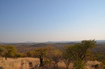 Wild african landscape