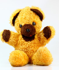 yellow teddy bear on white background