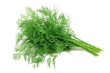 bunch fresh, green dill on a white background
