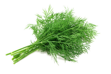 sprigs of dill on a white background
