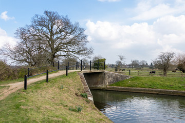 Bridge over the Canal at Papercourt Lock