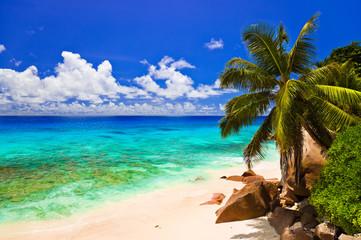Tropical beach at island La Digue, Seychelles