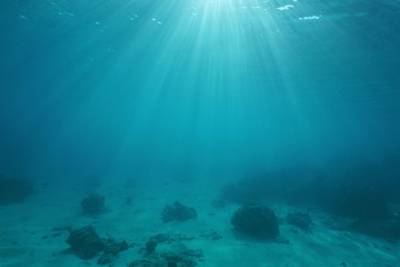 Ocean floor with sunlight through water surface, natural scene underwater, Pacific ocean, French Polynesia