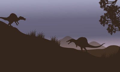 Silhouette of two spinosaurus in fields