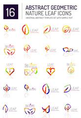 Geometric leaf icon set