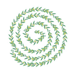 Watercolor olive swirl wreath. Isolated illustration on white background. Organic and natural concept.