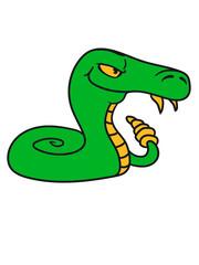 rattlesnake poisonous nasty bite dangerous comic cartoon snake
