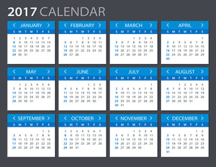 2017 Calendar - illustration   Vector template of 2017 calendar
