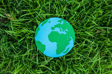 Земной шар на траве