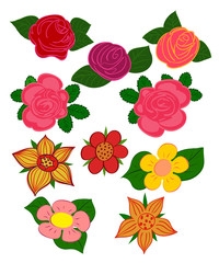 A set of images of different flowers.