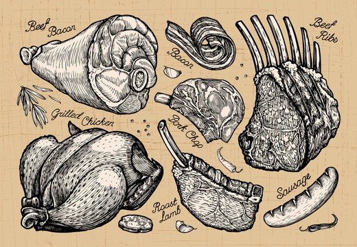 meat, butcher shop. hand drawn sketches of food. vector illustration