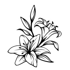 Lily photos royalty free images graphics vectors videos adobe vector black contour of lily flowers isolated on a white background mightylinksfo