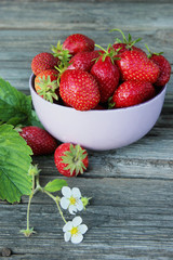 Appetizing fresh juicy strawberries in the bowl on the wooden background with leaves and flowers