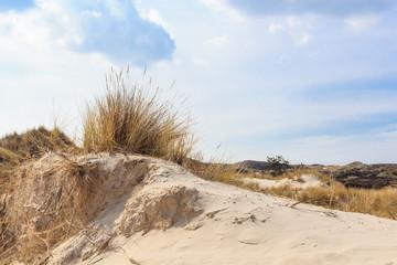 Dunes in Northern Europe
