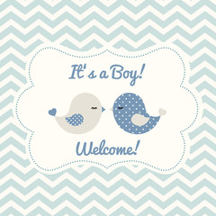 Boy baby shower with two cute birds, illustration