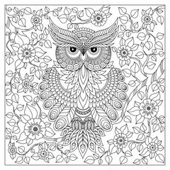 Coloring book for adult and older children. owl