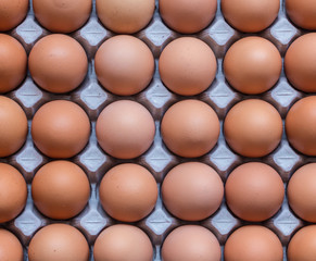 Eggs in cardboard carton. Abstract background.