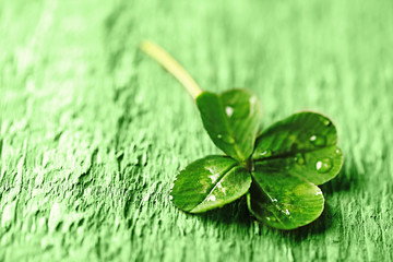 Wall Mural - St. Patricks day,  clover leaf on green wooden background