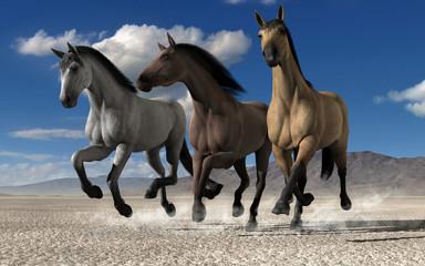 Tree horses running through desert fields. 3d rendering.