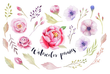 Watercolor Painting st of flowers with  leaves wallpaper. Hand d