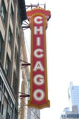 Beautiful Chicago Architecture