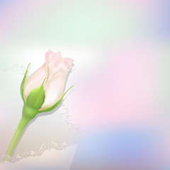 Delicate vector rosebud.