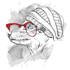 Hand draw fox in a hat and in the colored glasses. Vector illustration
