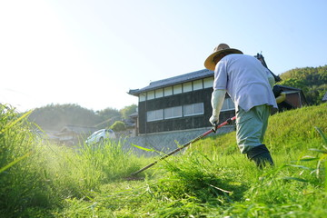 Old man mowing grass with mower / 草刈機で草刈りをする高齢者 農作業 農業 おじいさん おばあさん 農家 栽培