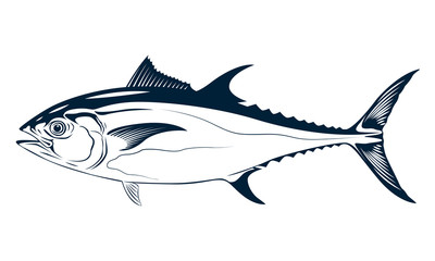 graphic tuna, vector
