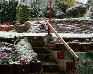 Schneefall im Frühling
