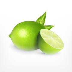 Lime. Vector icon
