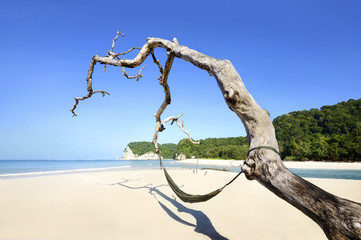 Fotobehang Indonesië Tarimbang Beach, Sumba, Indonesia
