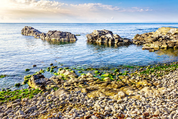 rocky sea coast with seaweed