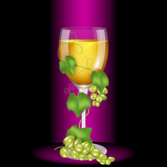 Glass of white wine wrapped vine. High quality vector