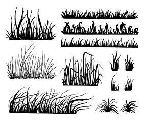 Grass Vector, Isolated On White Background, Vector Illustration