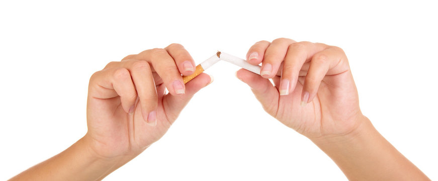 Female hands breaking  cigarette close-up isolated on white background.