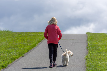 Woman walking a small brown dog up a hill on a path in a park on a sunny spring day