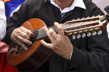 Músico tocando el laúd en la calle. Artista dando recital en el exterior. Primeros planos de un laúd. Instrumento tradicional.