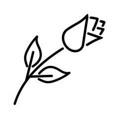rose flower leaf love thin line icon