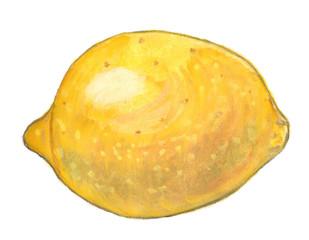 Watercolor illustration of yellow lemon
