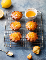 Lemon muffins cakes, financiers on a cooling rack Blue stone background