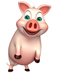 funny  Pig cartoon character