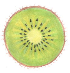 Illustration of kiwi in a cut on a white background watercolor
