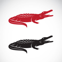 Vector image of an crocodile design on white background,  Logo,