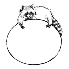 Cute raccoon lies on a round banner with blank space for text,  vector  illustration