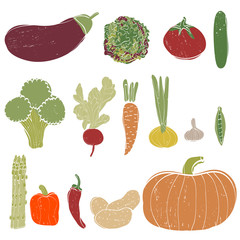 Vector vegetables set. Hand drawn vegetables made in vector. Isolated.