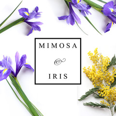 Spring flowers Mimosa and Iris Product Mockup. Perfume natural product handmade product branding flower logo.
